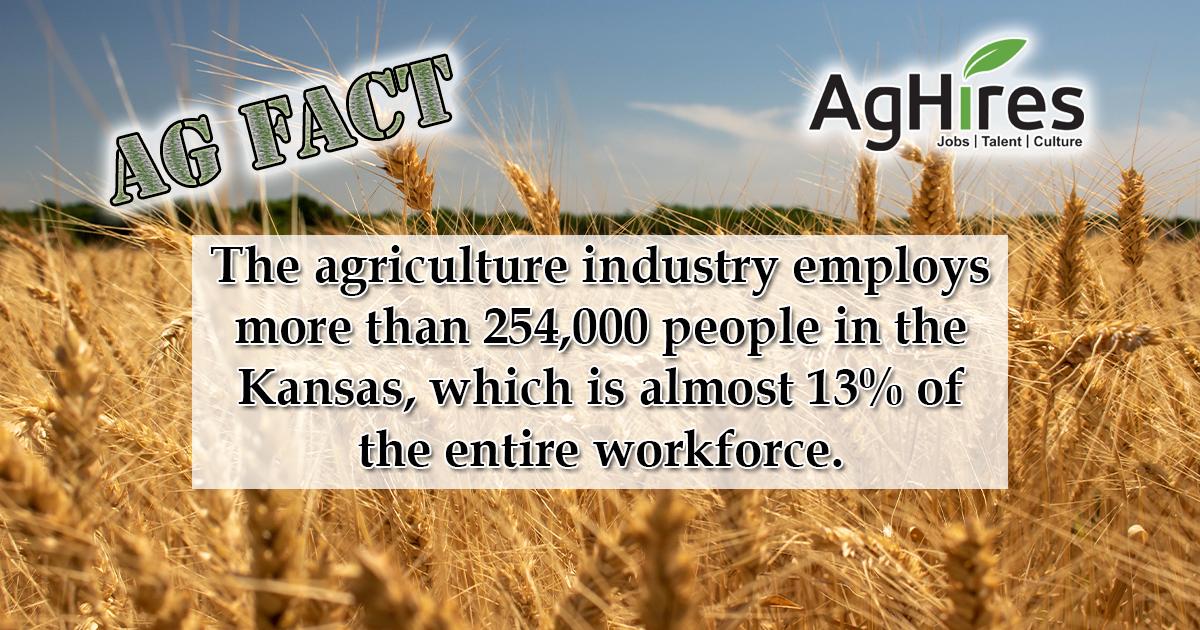 Kansas Facts