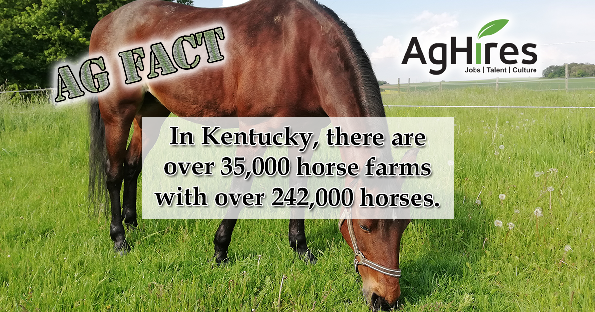 kentucky ag facts