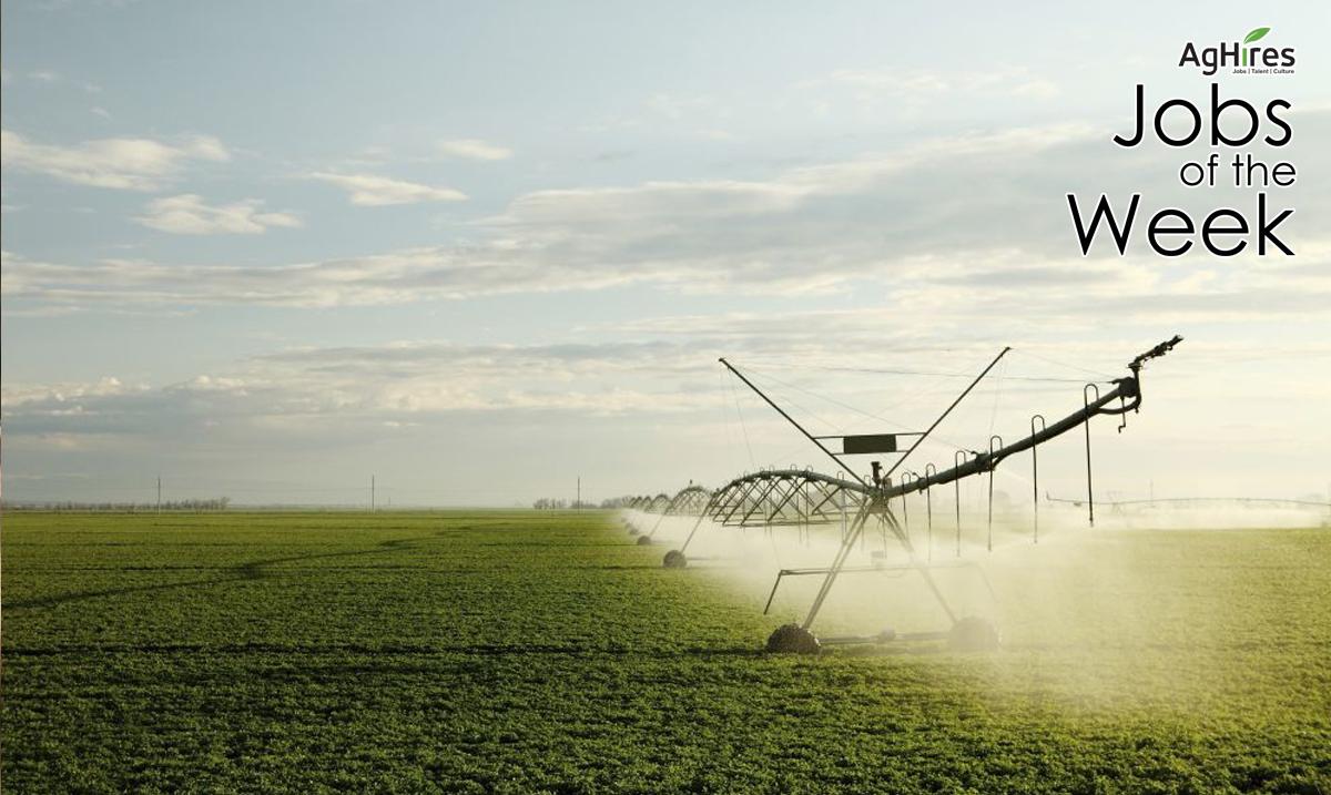Food Production Jobs