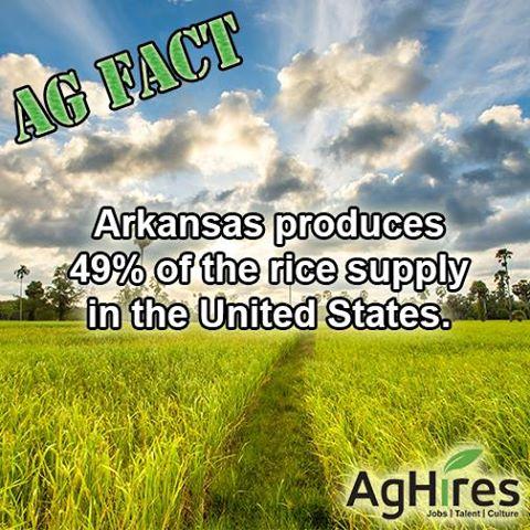 Arkansas produces