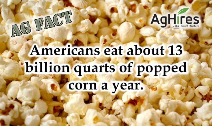13 Billion Quarts of Popcorn a Year