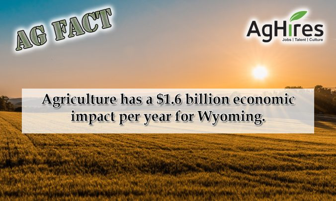 5 Wyoming Ag Facts