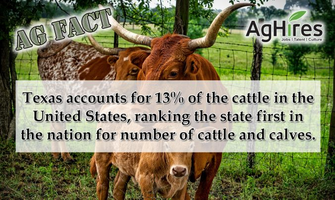 Great Texas Ag Facts