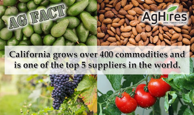 California Agricultural Facts