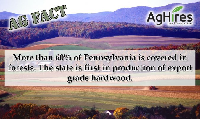 Pennsylvania Ag Facts