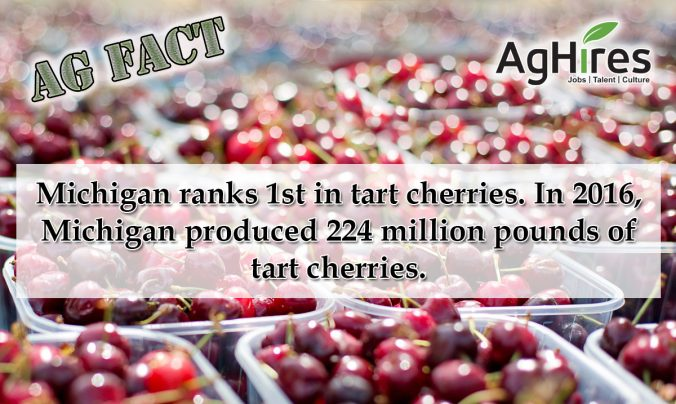 Michigan Ag Facts