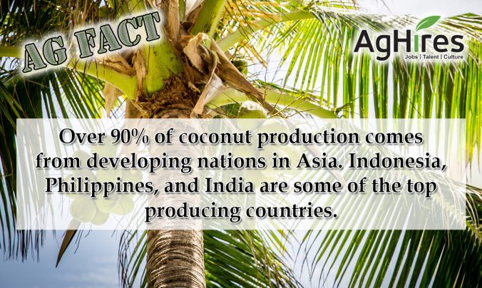 Coconut Ag Facts