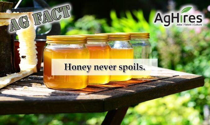 Honey Facts