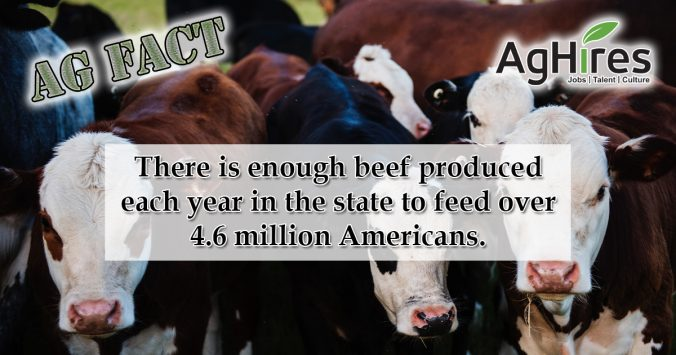 Arizona Agriculture Facts