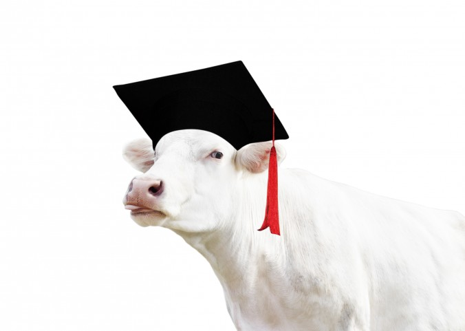 Degree in Agriculture